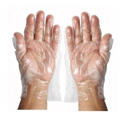 Disposable Clear Plastic Gloves